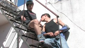 Javier & Fernando